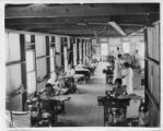 Warehouse of white female workers sewing, Florida.