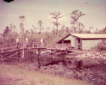 Fisherman gather at the Okefenokee Swamp boathouse to rent boats, 1952