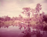 Fishermen in a scenic part of Okefenokee Swamp, 1951