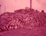Logs piled up outside the Coosa River newsprint paper mill before processing, 1950