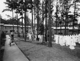 Clothesline strung between pine trees at a public housing apartment building in Gilbert Gardens,...