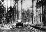 Good Road Tour automobile traveling through a wooded area, 1910