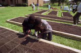 Residents help create a community garden at the East Lake Meadows public housing complex, 1992