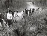 Volunteers and police search for clues for a missing child in a wooded area, 1980s
