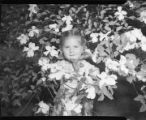 Little girl standing inside a dogwood tree, Atlanta, Georgia, April 1947.