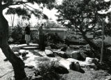 Japanese inspired garden at the Atlanta Botanical Gardens