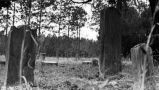 Photograph of tombstones of early settlers at Traders Hill, Charlton County, Georgia, 1968.