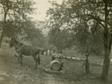 Three young Cherokee Indian boys with horse-drawn spraying pump in fruit orchard, Georgia, 1930s?