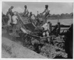 Workers on a potato harvesting machine