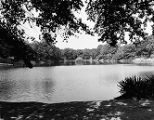 Atlanta City Parks Department, Piedmont Park (?) pond
