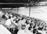 Crackers baseball crowd, Ponce de Leon Park stadium, Atlanta, Georgia, July 21, 1950.