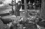Woman tending to a rafter or gang of turkeys, Georgia, 1930s.
