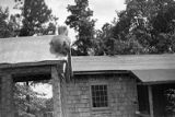Squirrel resting on the roof of a chicken coop, Georgia, 1930s.