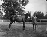 Man with a horse, Georgia, 1926.