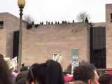 People on top of building, Women's March on Washington, 2017-01-21