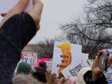 Donald Trump Cheeto sign, Women's March on Washington, 2017-01-21