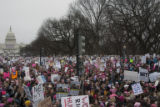 Crowd shown from above with Capitol building in the background, Women's March on Washington,...