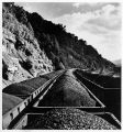 Train cars loaded with bituminous coal from the Coal Division of Eastern Gas and Fuel Associates,...